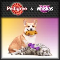 Main menu Facebook Application Pedigree and Whiskas
